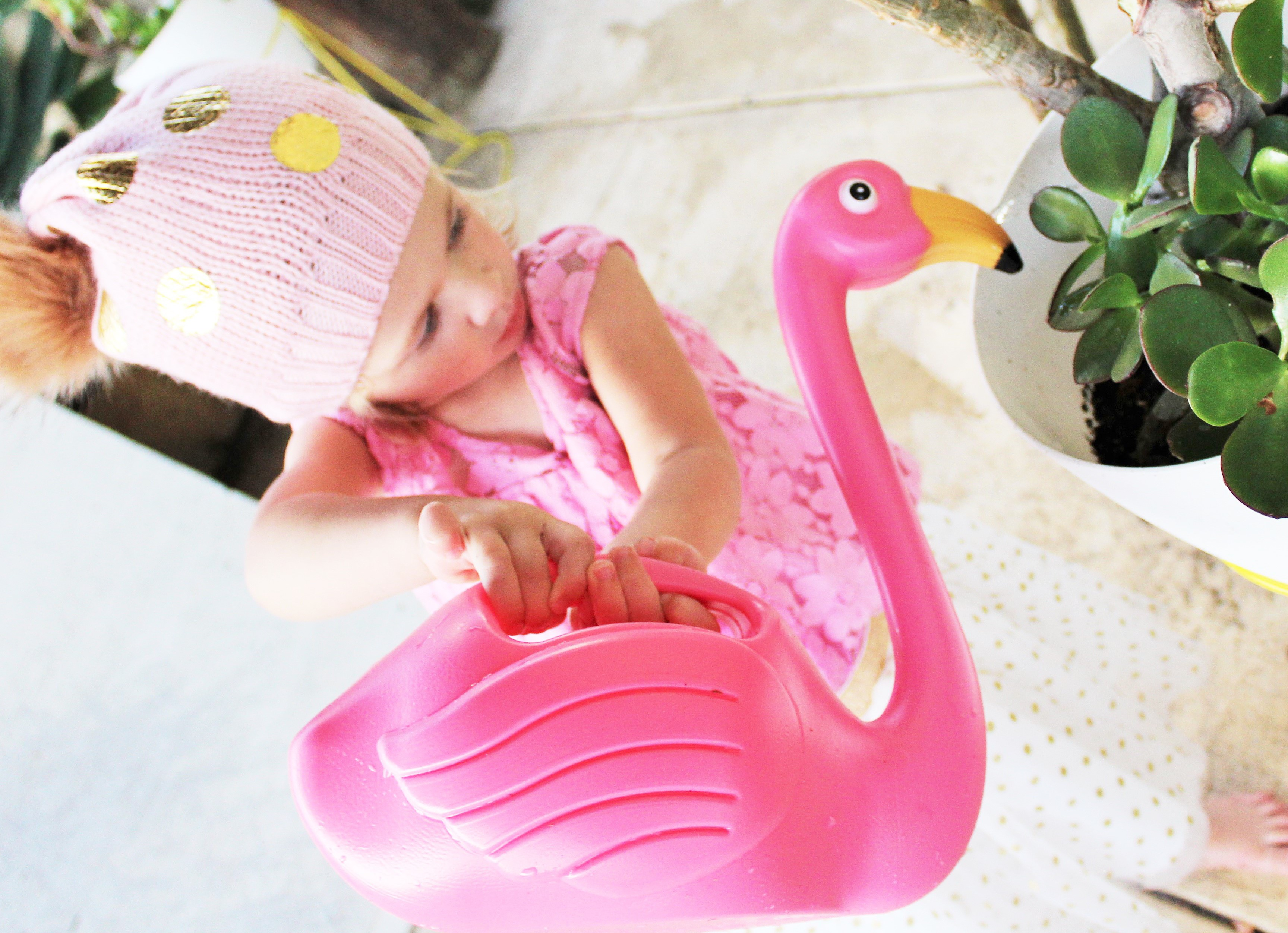 Flamingo Watering Can - www.fourcheekymonkeys.com