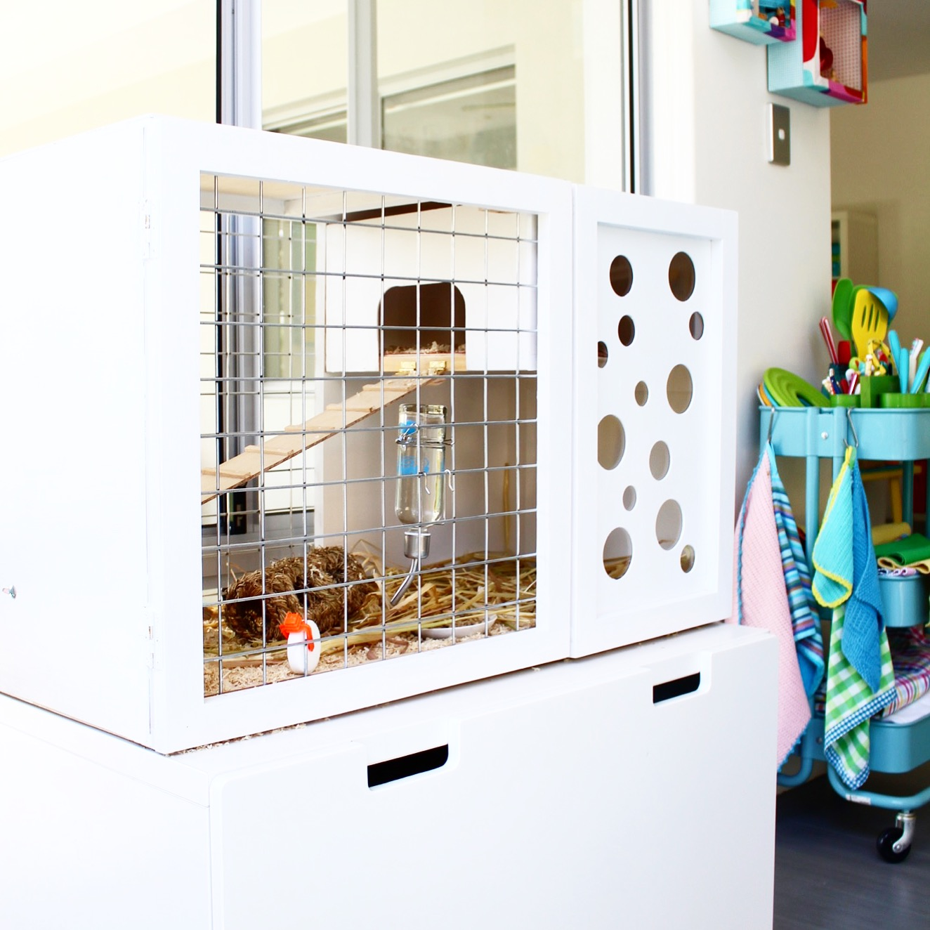 Cool guinea pig or hampster hutch DIY